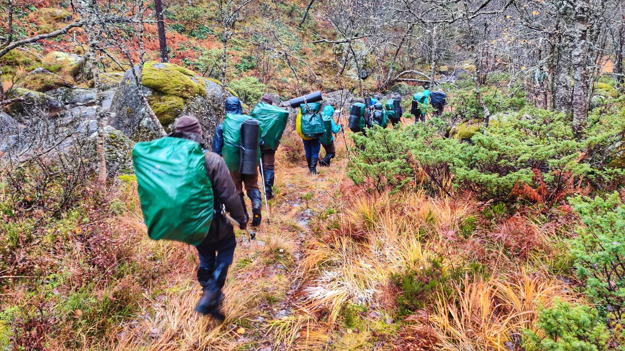 Gruppe Jugendlicher in Regenkleidung beim Wandern durch den Wald